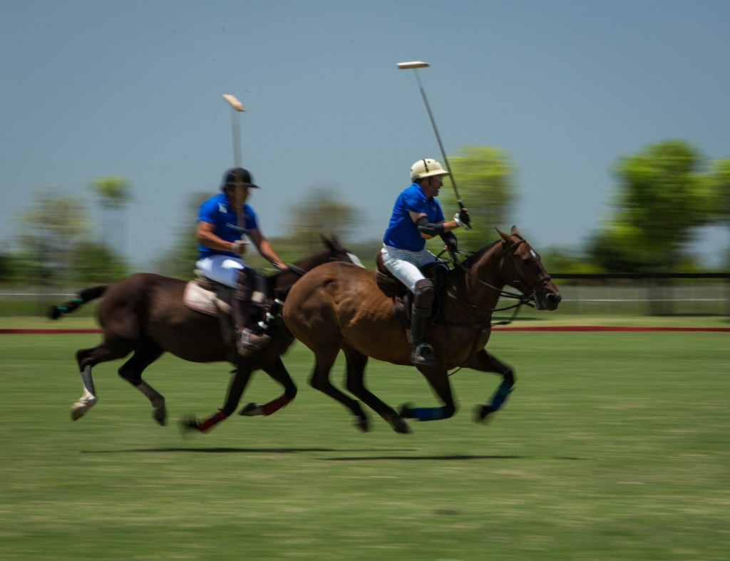 IN ARGENTINA? BE SURE TO CHECK OUT A POLO GAME!