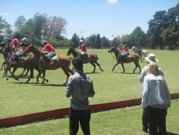history of polo in Argentina